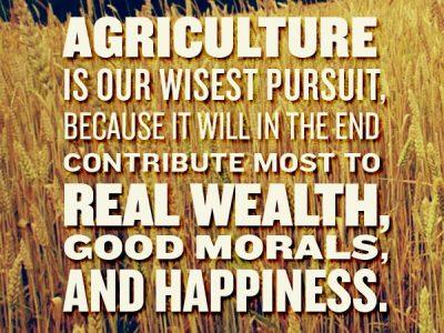 3 Traits of a Successful Farmer