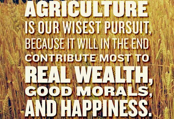 3 Traits of a Successful Farmer