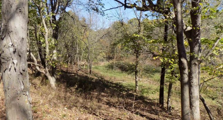 127 acres in Anderson County, Kansas