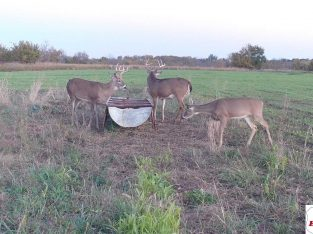 240 acres in Anderson County, Kansas